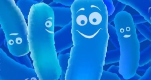 Probioticos-naturales-e1488125704930